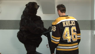 Bear and David Krejci
