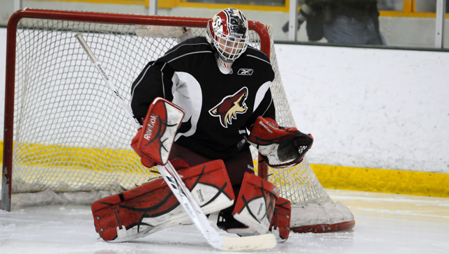 Mike Lee - Photo Courtesy of coyotes.nhl.com