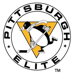 Additional information on the pittsburgh penguins elite hockey club